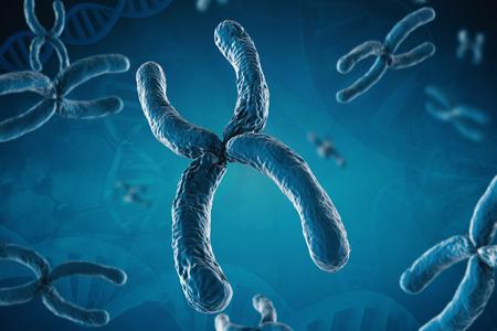 cromosoma: 3d que rinde el cromosoma azul sobre fondo azul Foto de archivo