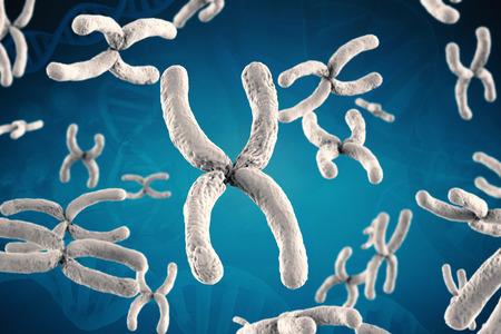 cromosoma: 3d que rinde el cromosoma blanco sobre fondo azul Foto de archivo