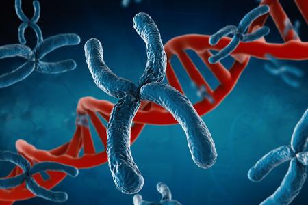 cromosoma: 3d que rinde el cromosoma azul con hélice de ADN en el fondo azul