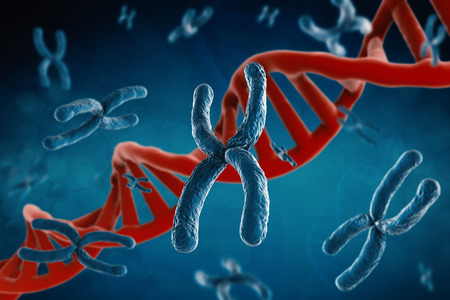 cromosoma: 3d rendering blue chromosome with dna helix on blue background