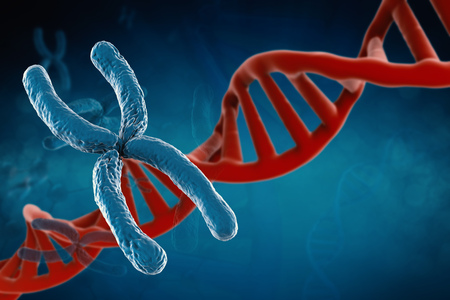 chromosome x y: 3d rendering blue chromosome with dna helix on blue background