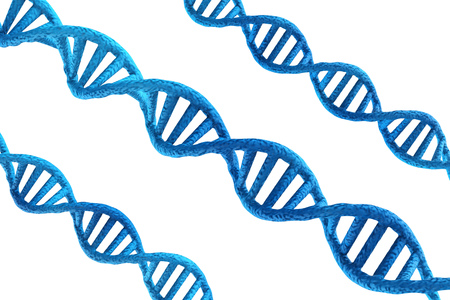 3d rendering blue dna structures on white background