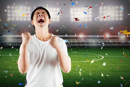 football fan: asian football fan celebrate with stadium and confetti background