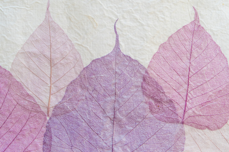 handmade paper: japanese handmade paper with violet leaves pattern Stock Photo