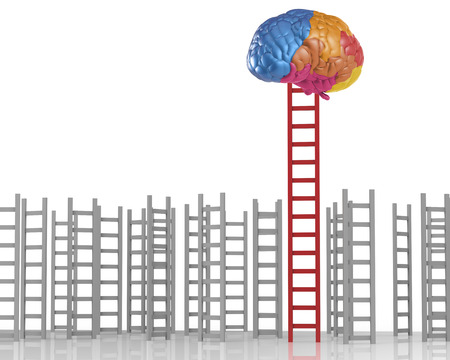 ladder to success concept with colourful brain and ladder