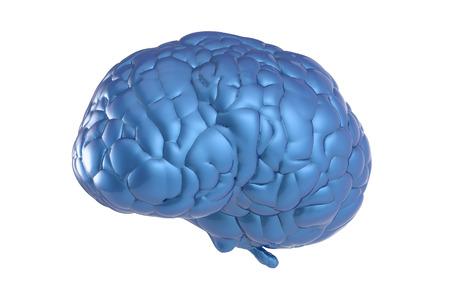 3d rendering blue brain on white background