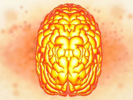 brain power concept with 3d rendering shiny human brain