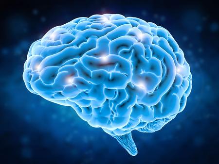 3d 렌더링와 함께 두뇌 파워 개념 반짝 인간의 두뇌 스톡 콘텐츠