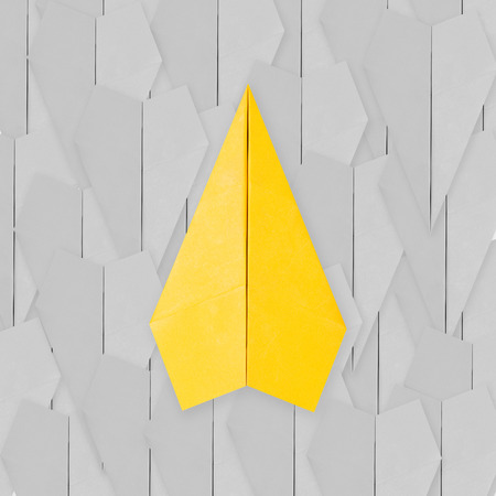 differentiation: differentiation concept with yellow paper plane