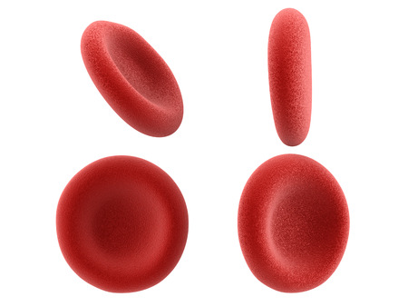erythrocyte: 3d rendering red blood cells isolated on white Stock Photo