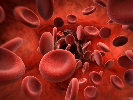 3d rendering red blood cells in vein Stockfoto