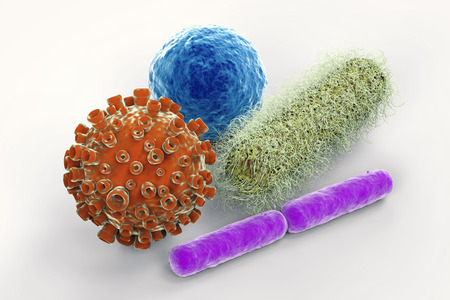 3d rendering virus and bacteria cells on white background