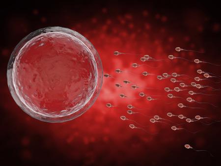 espermatozoides: 3d prestación de espermatozoides fertilizar el óvulo con Foto de archivo