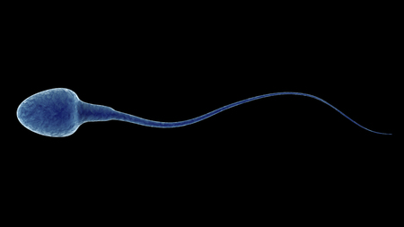 fertilize: 3d rendering blue sperm isolated on black Stock Photo