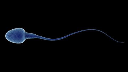 3d rendering blue sperm isolated on black Foto de archivo