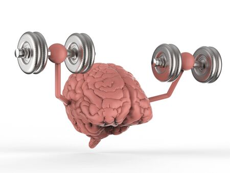 3d rendering brain holding dumbbells on white background