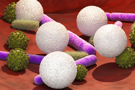 3d rendering virus and bacteria cells with white blood cells in vein Stock Photo