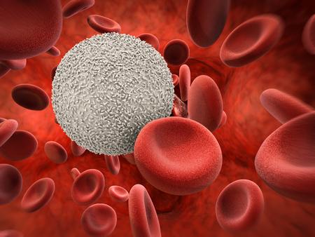 3 차원 렌더링 백혈구와 적혈구