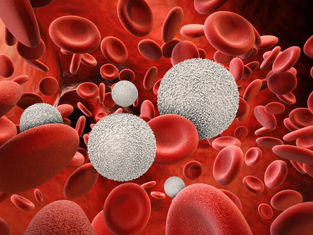 3d rendering white blood cells with red blood cells Stockfoto