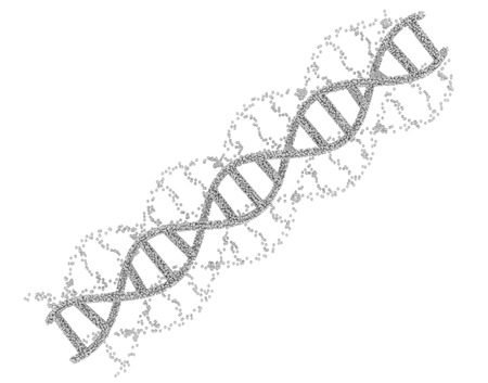 3d rendering white dna helix or dna structure