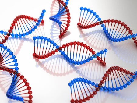 3d rendering red and blue dna helix structure Stok Fotoğraf