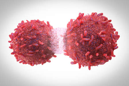 3d rendering red cancer cell divide or spread out