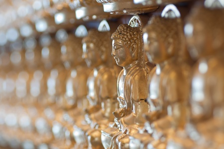 godhead: 10000 Golden Buddha in Chinese temple Stock Photo