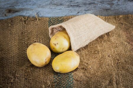 sackcloth: Young potatoes on sackcloth
