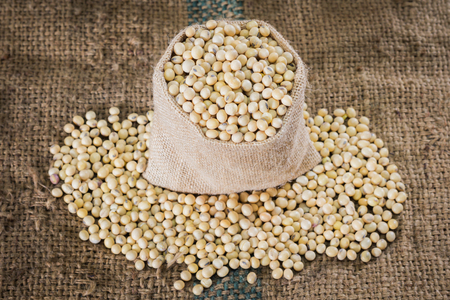 sackcloth: soybeans on sackcloth