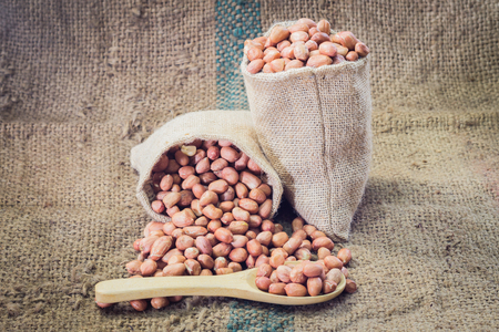 pygmy nuts: fresh ground nuts in spoon and pile on sack cloth.