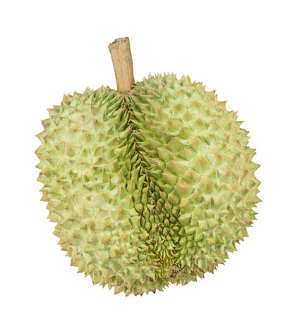 Fresh durian, King of fruit from Thailand isolated on white background