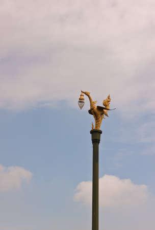 bird image on electric post photo