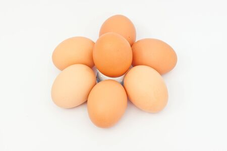 Many eggs  on white paper photo