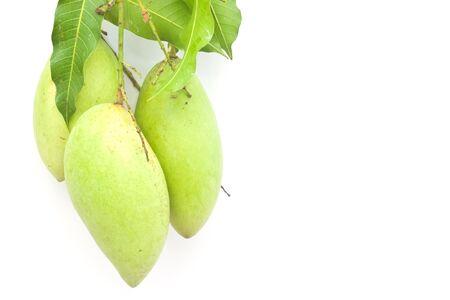 Mango on white paper Stock Photo
