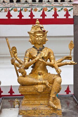 Beauty of Brahma