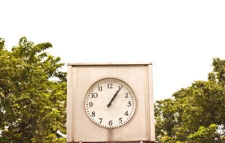 Clock in garden