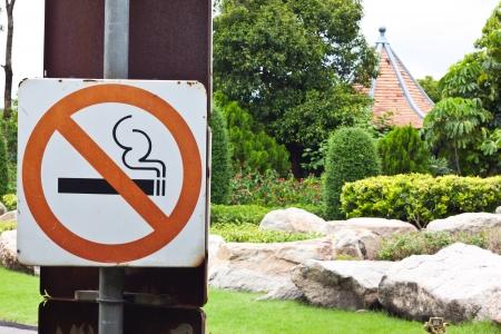 smocking: No smocking in gadent