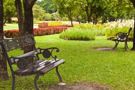 panchina nel giardino Archivio Fotografico