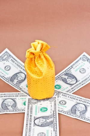 golden money bag on many dollars Stock Photo - 16479462