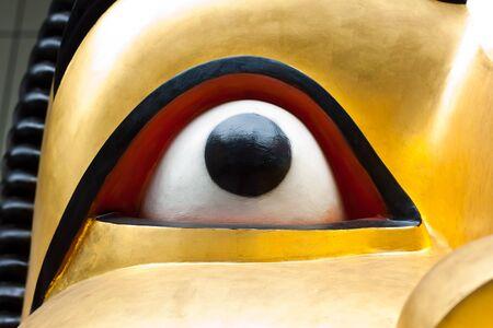 close up eye: close up eye of image