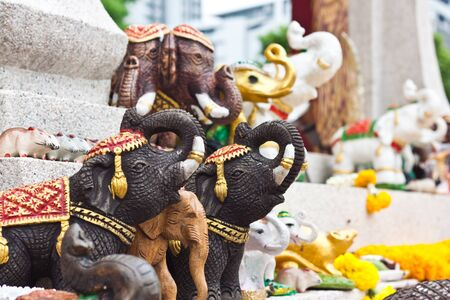 elephan l'image