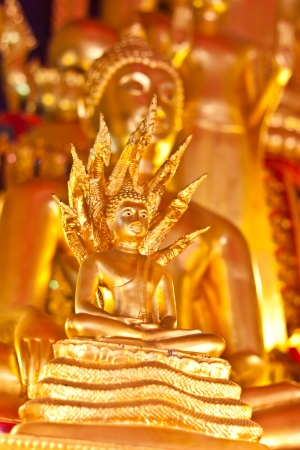 Buddha statue in Thailand photo