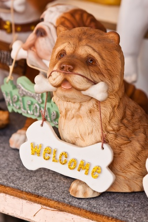 welcome style photo