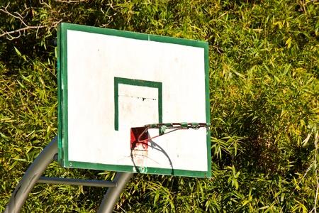 Basketball hoop in garden photo