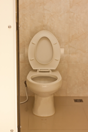 flush toilet in toilet photo