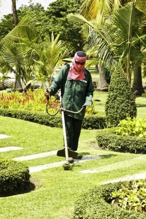 The gardener was mowing