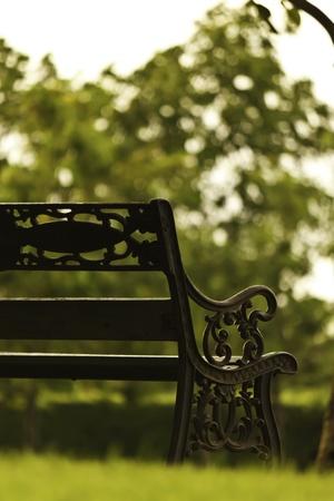 bench alone: bench in garden