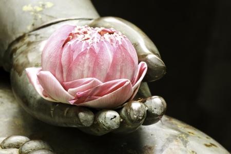 cabeza de buda: loto en la mano Foto de archivo