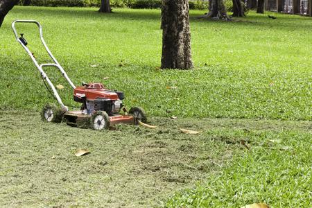 lawnmower in garden photo