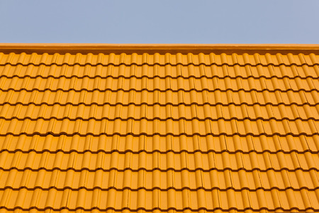 the roof photo